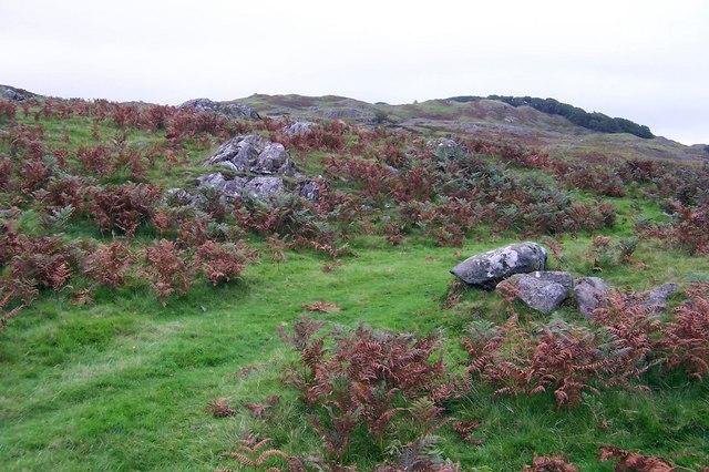 Blairinnie Hillside