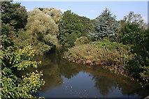 SX8672 : The River Teign from Kingsteignton Bridge by Tony Atkin