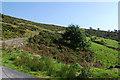 SN8681 : Hillside at Bwlch-y-pridd by Nigel Brown