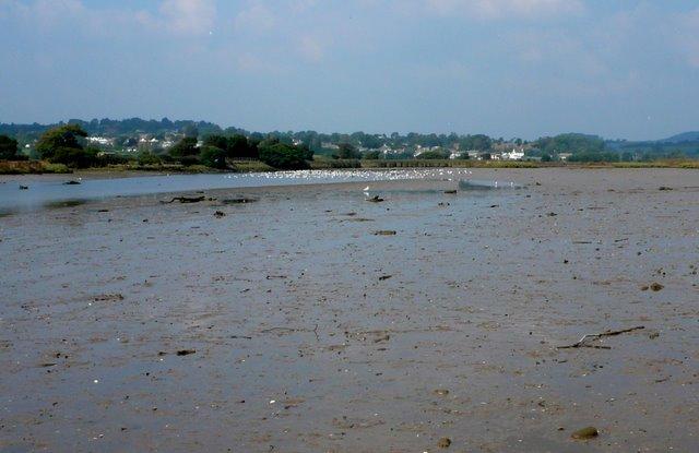 Axe Estuary