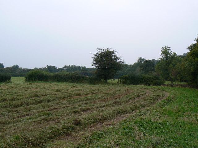 Farm land near Cloddock