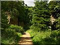 NZ0878 : Belsay Hall grounds by Chris Gunns