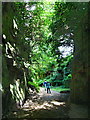 NZ0878 : Path to Belsay Castle by Chris Gunns