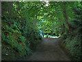NZ0878 : Near Belsay Castle by Chris Gunns