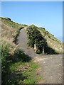 TG3137 : Steep path to the car park by Evelyn Simak