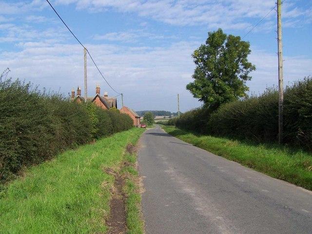 Lane Near Forest Thorn