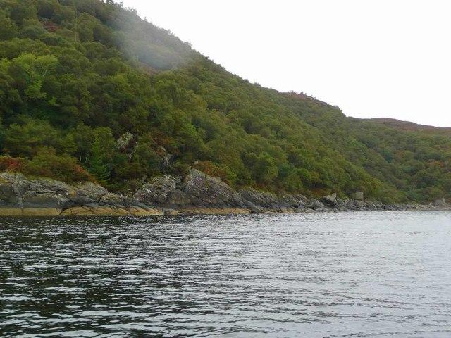 Loch Fyne coast near Morrison's Mill
