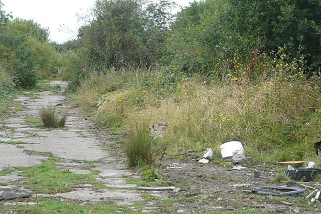 Wasteland at Grove