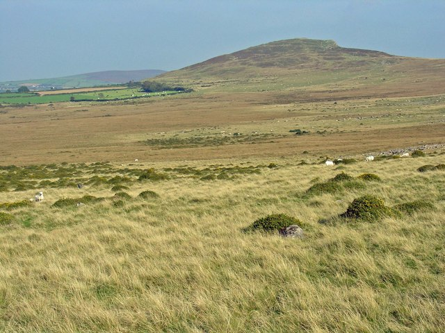 Moorland between Carnalw and Foeldrygarn