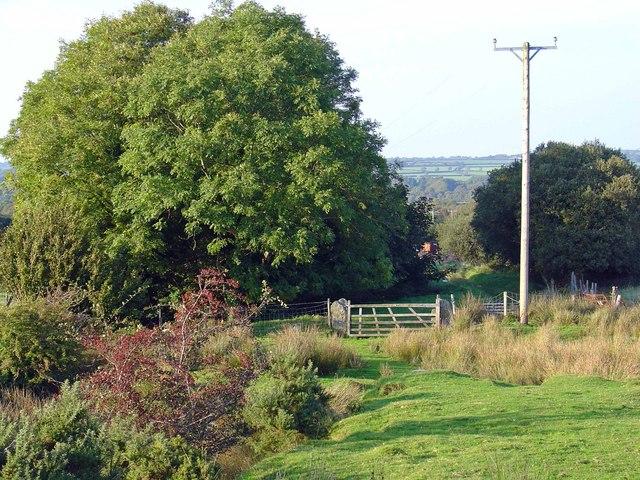 Gate on bridleway to the Preseli ridge: Blaenffynnon, Meline