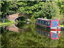 SO8685 : Staffordshire and Worcestershire Canal near Stourton by Roger  Kidd
