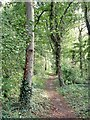 SJ4461 : Saighton - bridleway 10 by Mike Harris