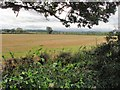 SJ4361 : Saighton - view from bridleway 10 by Mike Harris