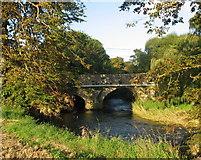 O1170 : Dardistown Bridge, Cooper Hill, Co. Meath by Kieran Campbell