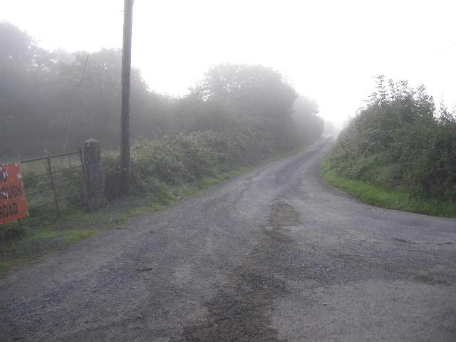 Lane at Ferganstown & Ballymacon, near Navan, Co. Meath