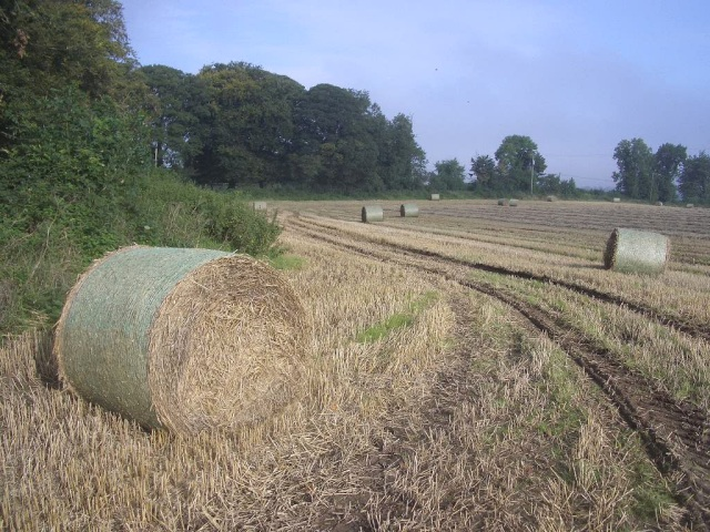 Hay Bales at Kingstown and Carnuff Great, Near Navan, Co. Meath
