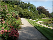 SX4268 : Upper gardens, Cotehele by Roger Cornfoot