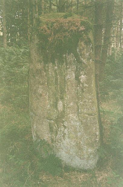 Standing Stone in Bandirran Woods.