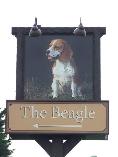 The Beagle pub sign