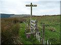 SN8976 : Stile on the Wye Valley Walk by Nigel Brown