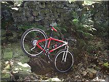 SE0125 : Rock step on Stake Lane by michael ely