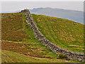 NN8525 : Drystane Dyke by Dr Richard Murray