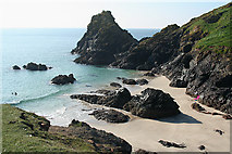 SW6813 : Landewednack: The Bishop, Kynance Cove by Martin Bodman