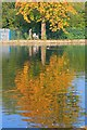 NZ4318 : The Lake, Ropner Park by Mick Garratt