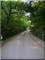 TQ2112 : Hillside Lane by Simon Carey