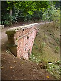 SJ2504 : Culvert over the brook by Penny Mayes