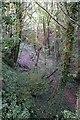 SU5174 : Railway cutting near Four Elms by Graham Horn