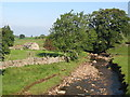 NY8548 : The River East Allen below the Corn Mill bridge by Mike Quinn