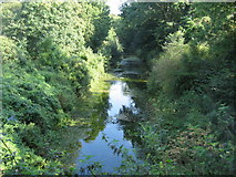 SU7151 : Basingstoke Canal - from Greywell Tunnel by Sandy B