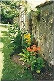 NJ5429 : Leith Hall gardens by Sarah Charlesworth