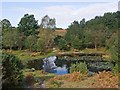 SU2709 : Pond on Acres Down by Peter Facey