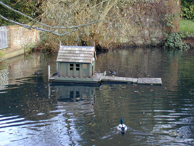Floating home for ducks and associates