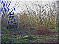 SU0019 : Steps over Deer fence, Garston Wood by Clive Perrin