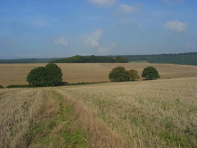 Farmland, Wheeler End