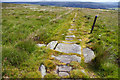 SD9222 : Culvert on Long Causeway, Inchfield Moor by Phil Champion