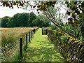 NR8297 : Path to Ri Cruin Cairn by Rich Tea
