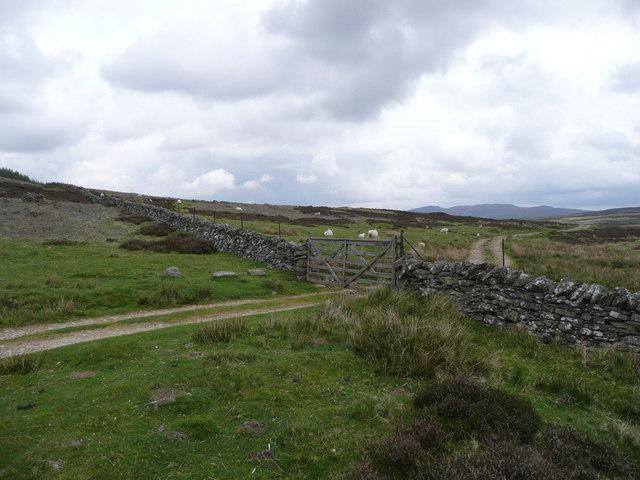 Track to Loch Broom