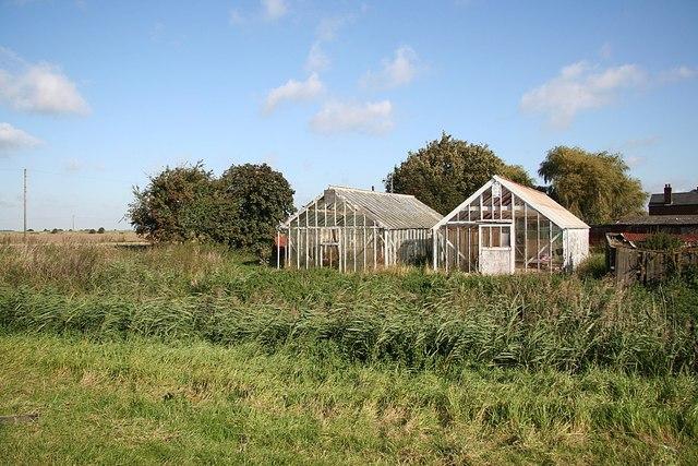 Willow's Farm