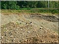 NR8399 : Gravel Pit, Kilmartin Glen by Rich Tea
